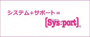 sysport-1038x430